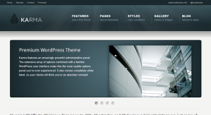Top 5 Premium Wordpress Themes