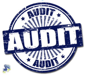 SEO Audit Guide Part 2: Technical SEO Audit