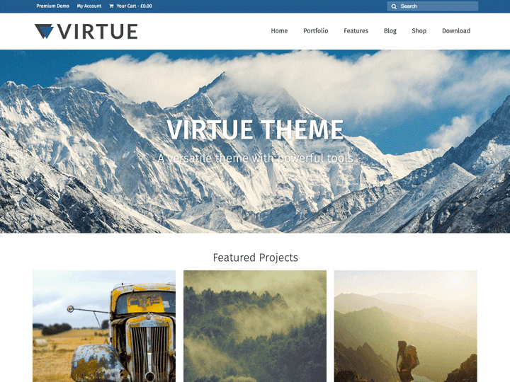 Virtue WP Theme