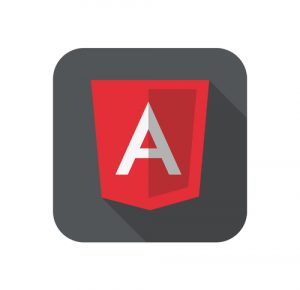 Checkpoints When Hiring An Angular JS Developer